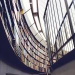 knihovna_big